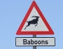 Humorous African Signage and Warnings